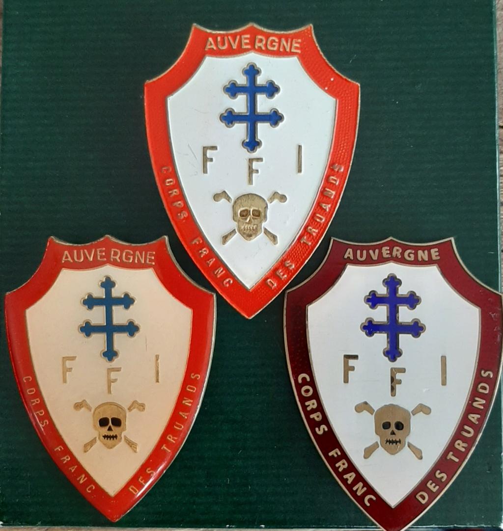 Insigne FFI Auvergne  20200712