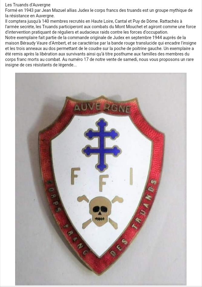 Insigne FFI Auvergne  Ffi_au10