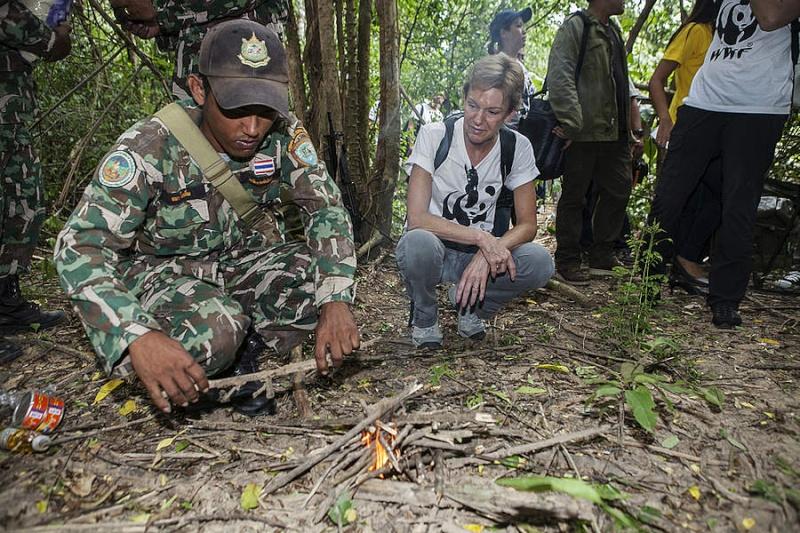 Thailand Forest Ranger Pattern Amb_ke10