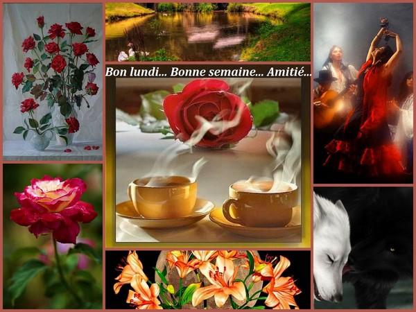 (Archive 31ème]-Salon de détente spécial rentrée 2013  - Page 18 98e50010