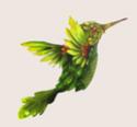 Bestiaire de la Forêt de Jade. Sylveb10