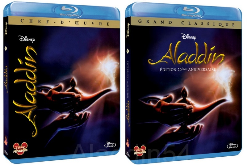 Disney Privilège: Votez pour votre jaquette préférée d'Aladdin [Protestation et nouvelle jaquette proposée !] - Page 12 Aladdi10