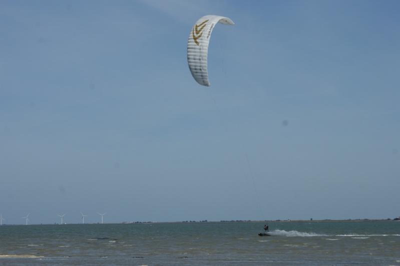 [Terminé] Entre la Charente maritime et La Baule, l'île de Noirmoutier l'été 2013 - Page 3 Dsc00910
