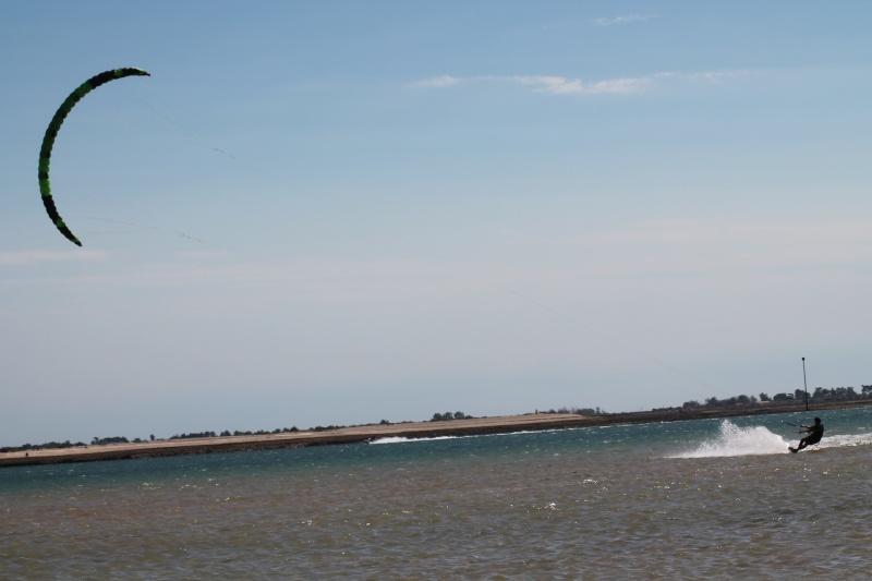 et pendant ce temps en Charente Maritime... - Page 2 Img_4410