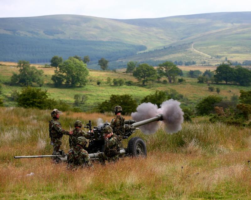 Armée Irlandaise/Irish Armed Forces - Page 2 1104