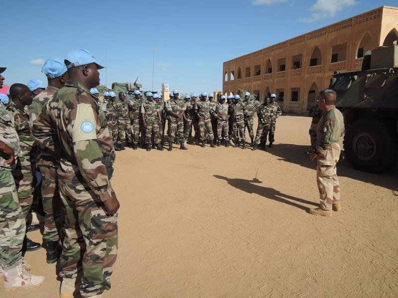 Forces Armées Nigeriennes / Niger Armed Forces ( FAN ) 1a048