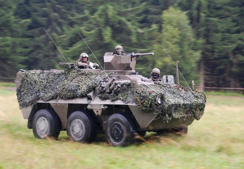 Armée autrichienne / Austrian Armed Forces / Österreichisches Bundesheer  - Page 4 1a1213