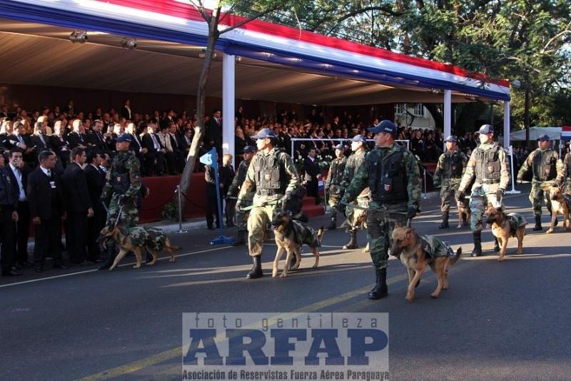 Armée paraguayenne 1a4310