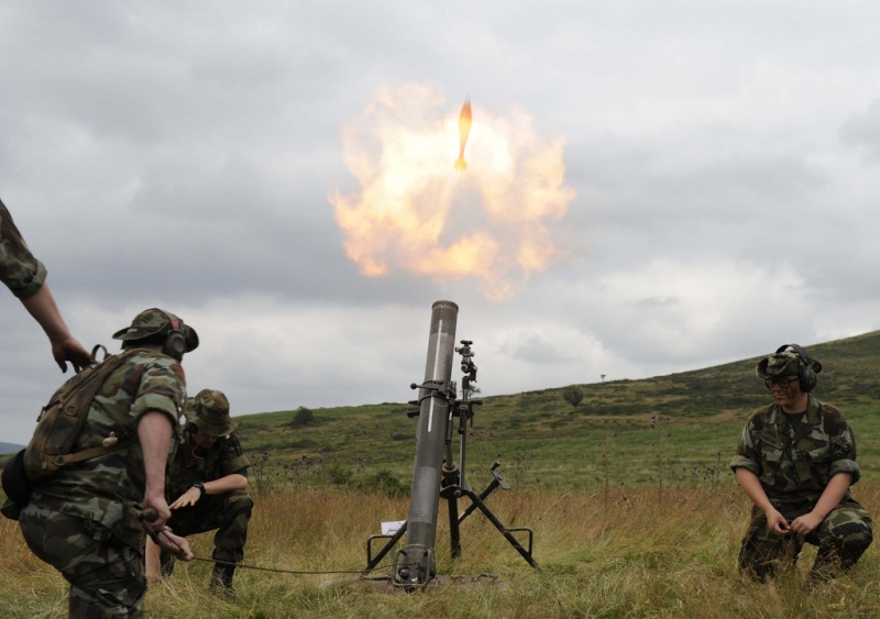 Armée Irlandaise/Irish Armed Forces - Page 2 1a522