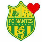 J33 - Samedi 20 avril (14h00) : FC NANTES - AJ AUXERRE : 1-1 Safe_i10
