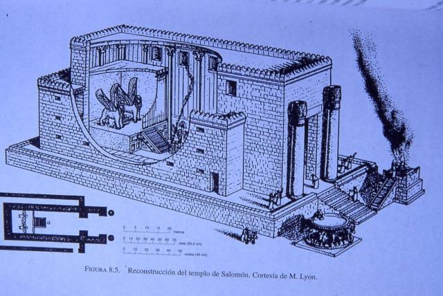 ~~Historia Antigua~~ Etapa prefenicia: Ugarit y Canaán 7_reco10