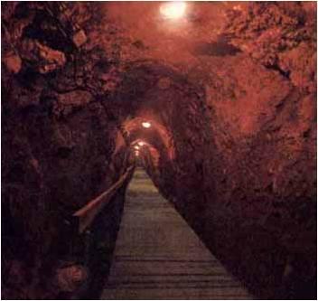 ~~Historia Antigua~~ Etapa prefenicia: Ugarit y Canaán Image113