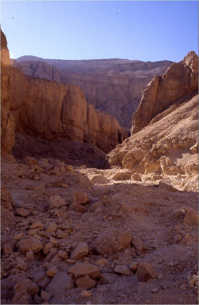 ~~Historia Antigua~~ Egipto: El medio geográfico Image128
