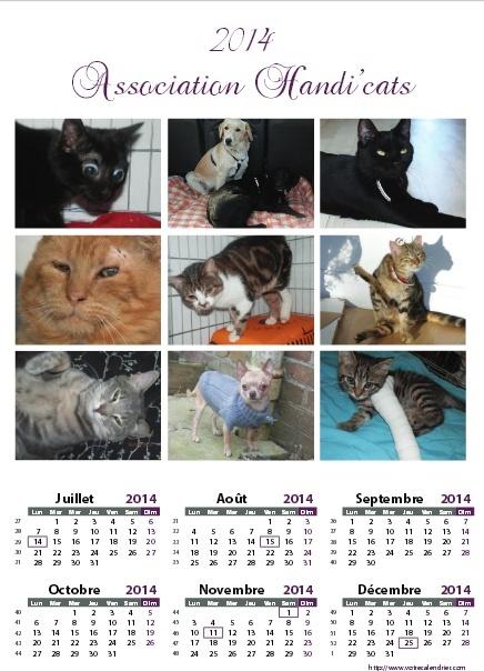 Calendriers 2014 de l'association Handi'cats Dafini13