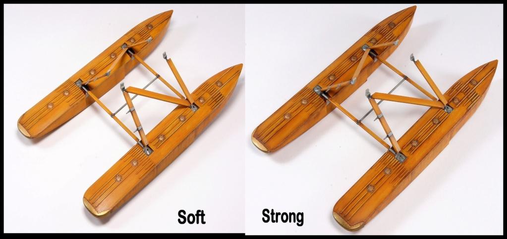 Hansa-Brandenburg W.29  Wingnut Wings & Aviattic 1/32 - Page 2 Dsc03833