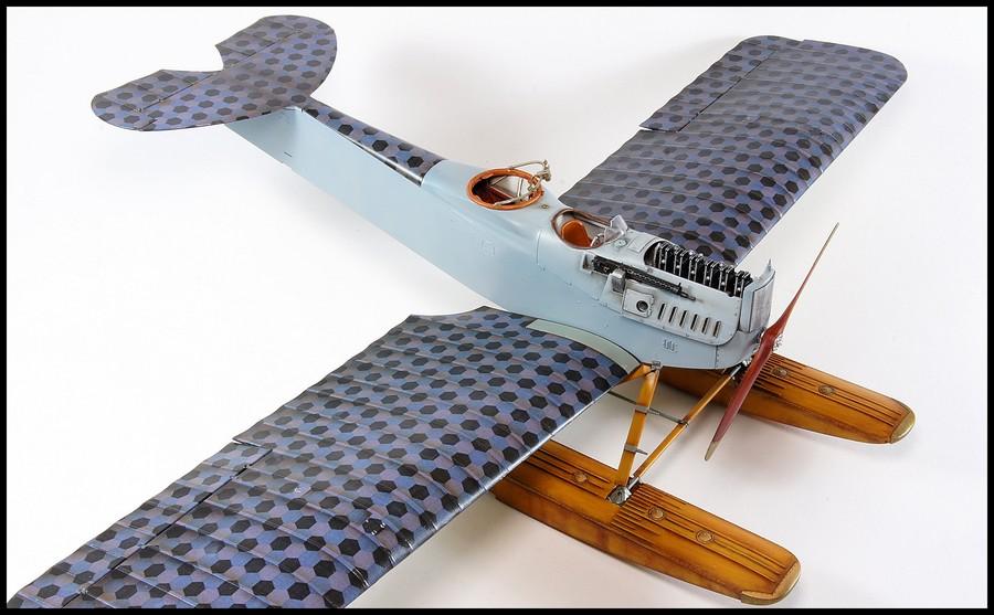 Hansa-Brandenburg W.29  Wingnut Wings & Aviattic 1/32 - Page 2 Dsc03839