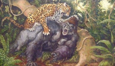 GORILLA X LEOPARD - COMPARATIVE ANALYSIS AND RESULTS 1510