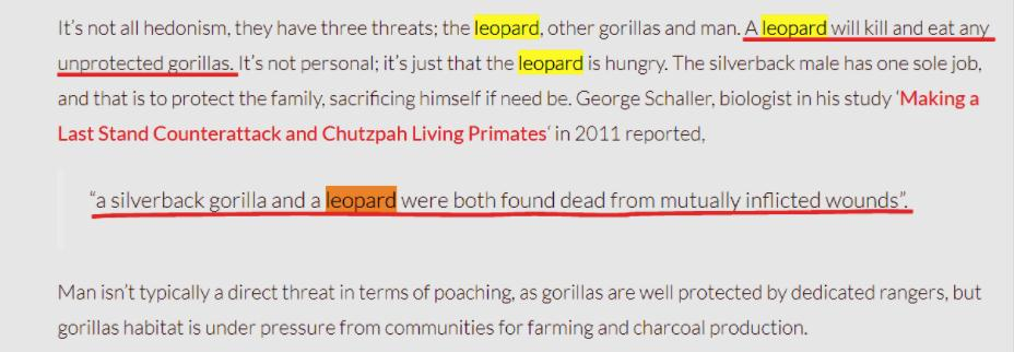 GORILLA X LEOPARD - COMPARATIVE ANALYSIS AND RESULTS 1910