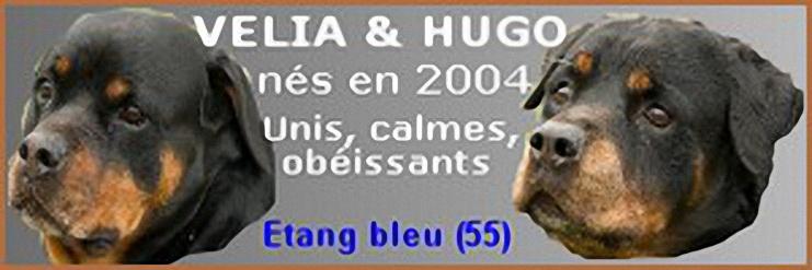 """VELIA ET HUGO  """"vieux os """" Velia_10"""