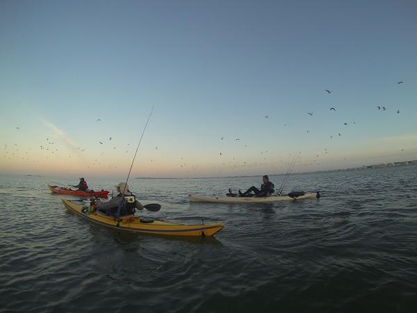 SAILTICA Fishing: 31 Aout et 1er Septembre à Pornichet - Page 4 Gopr1010