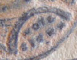 inscription VOT X SIC XX sur un bouclier Consta75