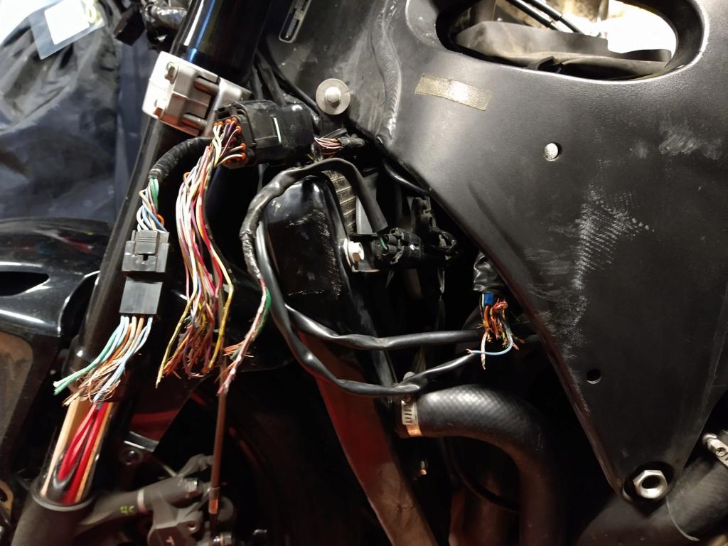 Remplacement faisceau Honda CBR SC59 Img_2079