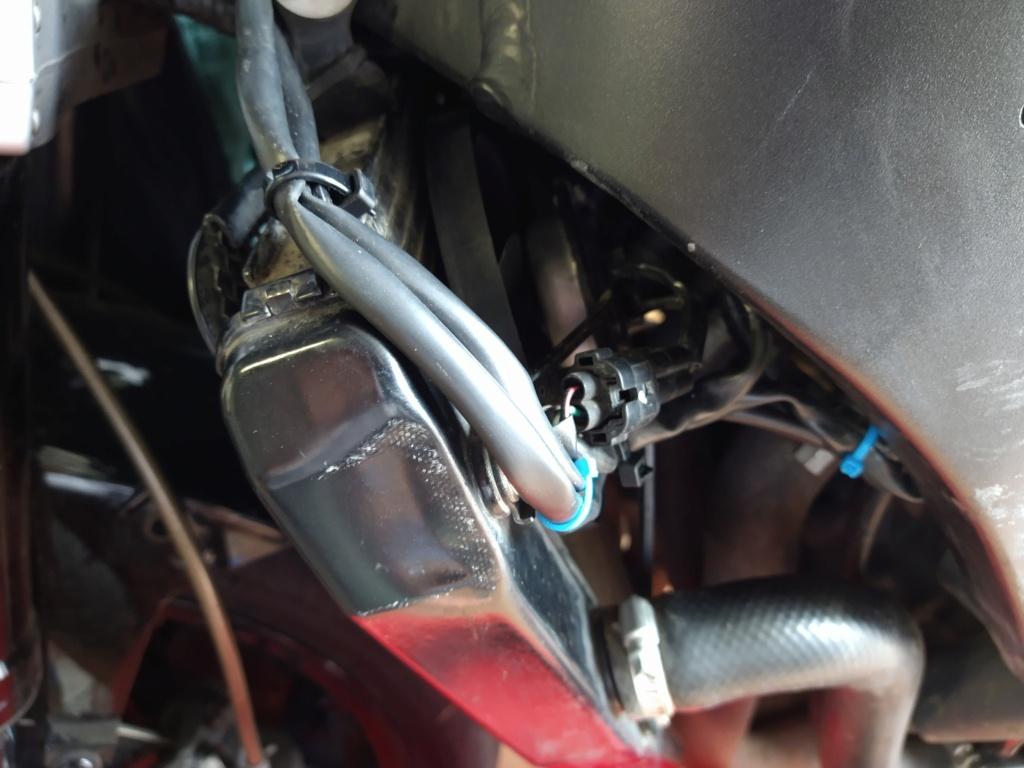 Remplacement faisceau Honda CBR SC59 Img_2087