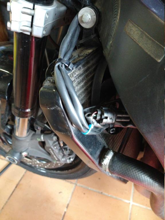 Remplacement faisceau Honda CBR SC59 Img_2088