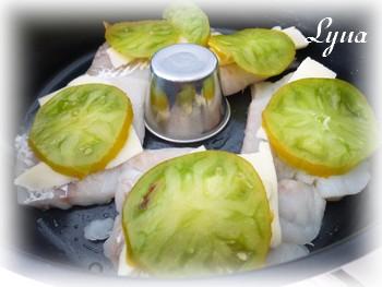 Filets d'aiglefin cuisson sans le bras central - Actifry Aiglef10