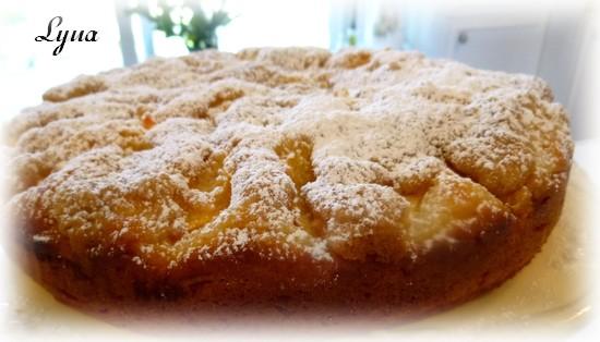 Gâteau aux pêches Gateau12