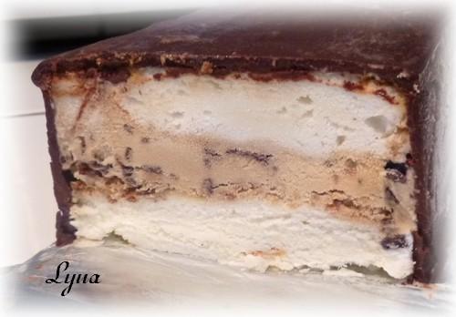 Gâteau à la crème glacée Gateau19