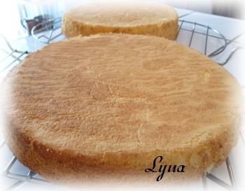 Shortcake aux fraises - gâteau éponge Shortc11