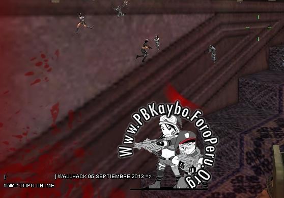 WALLHACK PARA PB KAYBO 19 DE OCTUBRE DEL 2013 DE POR VIDA (A LA VENTA) DESPUES DE LA ACTUALIZACION DEL 01-10-13 210