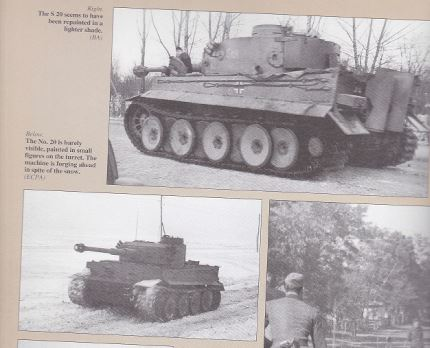 Taigen Tiger I, Early Version;  My Next Project Grossd11