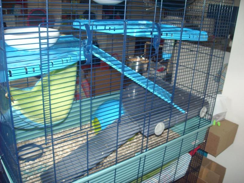 2ème porte sur cage freddy 2 max Dscn2619