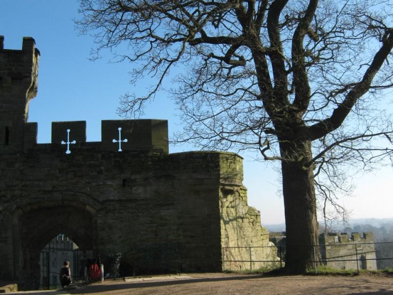Warwick Castle  Wrawic10