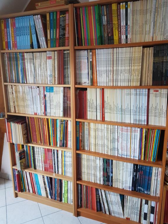 Photographies de bibliothéque 20200313