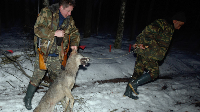 Russia to Ban Hunting ? 128