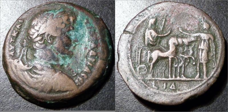 Spécialiste du monnayage d'Alexandrie Had_3213