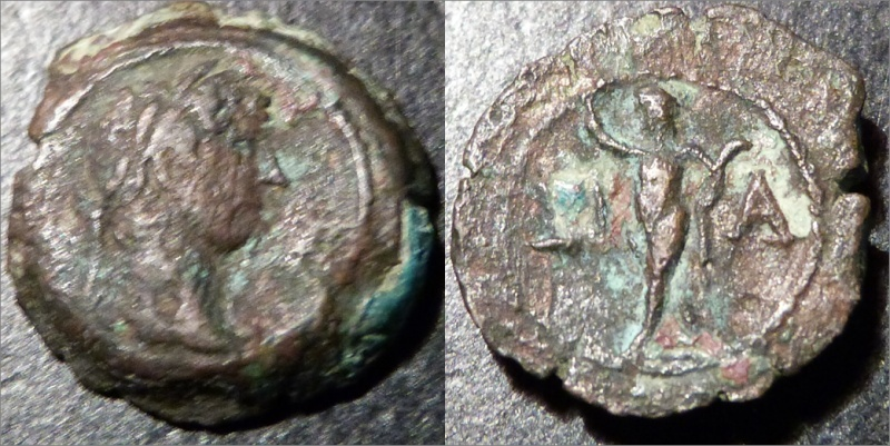 Spécialiste du monnayage d'Alexandrie Had_3214