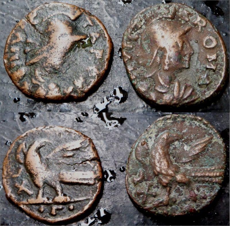 INVICTA ROMA Invict10
