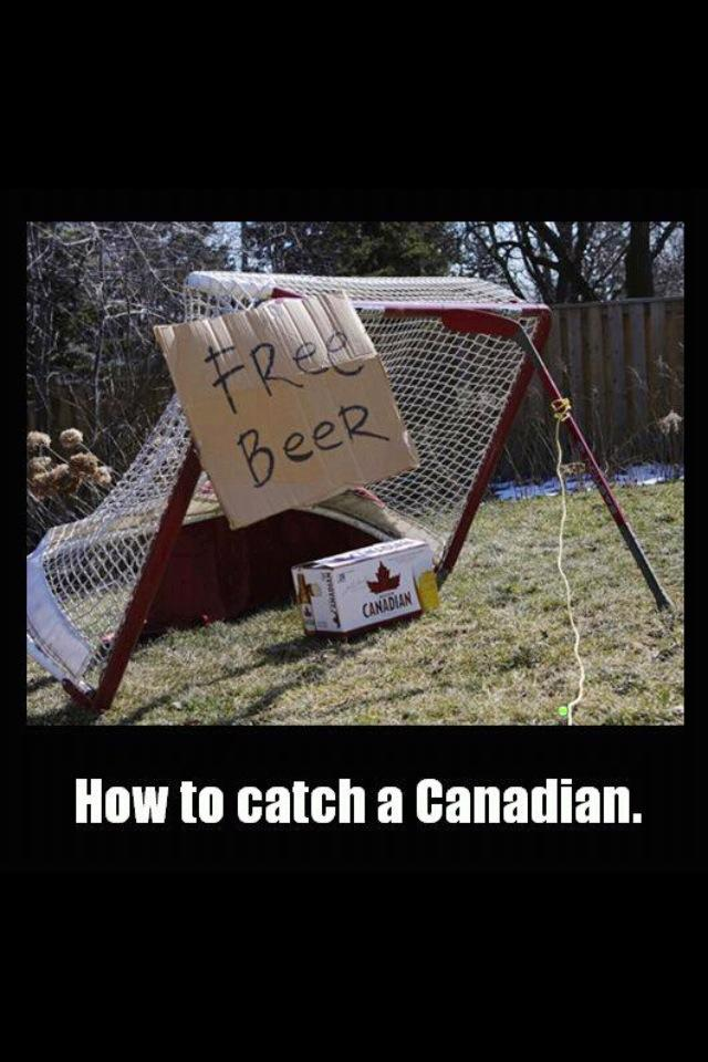 How to Catch a Canadian How_to10
