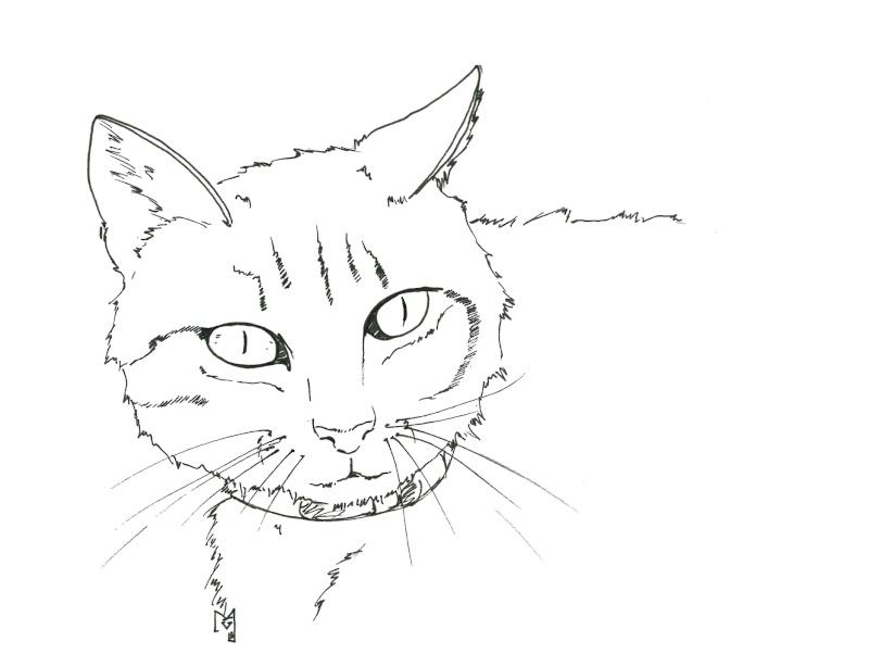 Les sketchs de Mava Boudou10