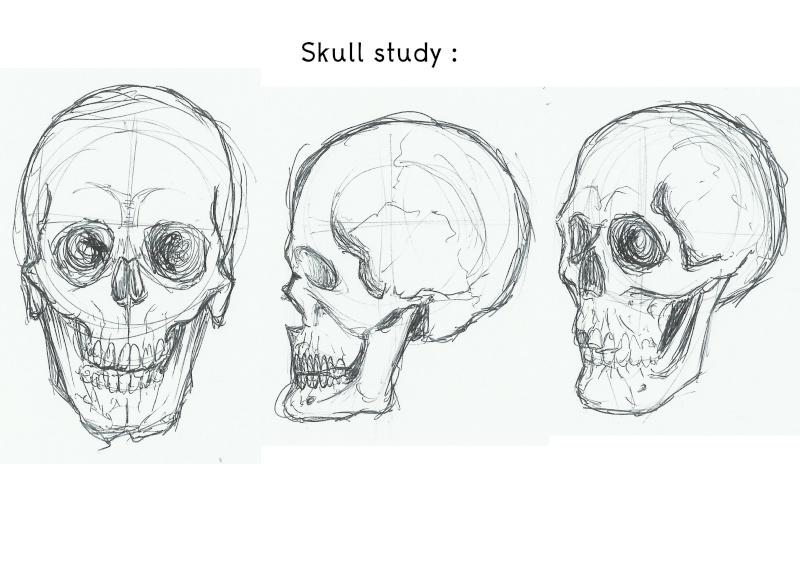 Maxtronaute [Challenge été P20] ◕‿◕ Skull_10