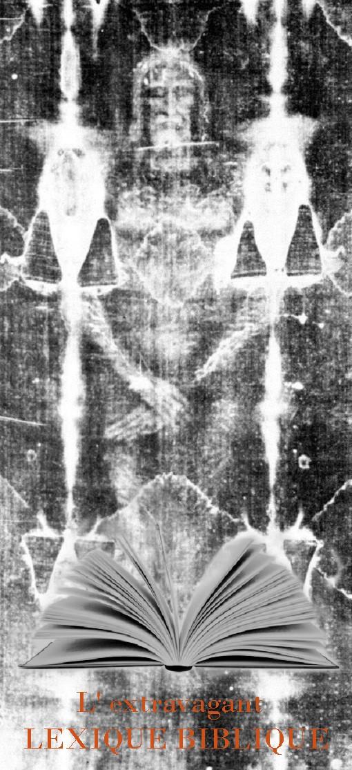 Le linceul conservé à Turin, preuve de la crucifixion et de la résurrection de Jésus? - Page 5 Zzxxzl10