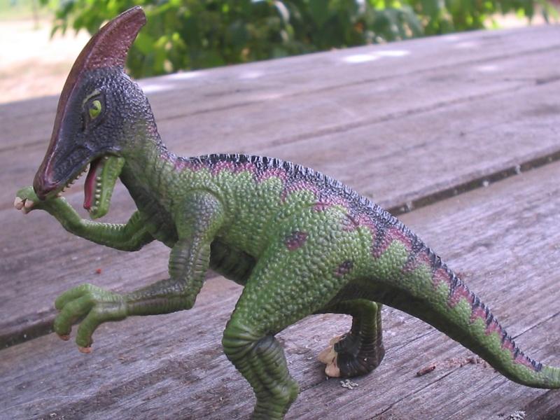 voxosaure et tour de guet HL Img_4222