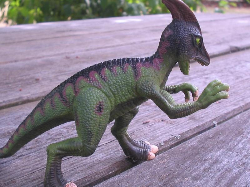 voxosaure et tour de guet HL Img_4223