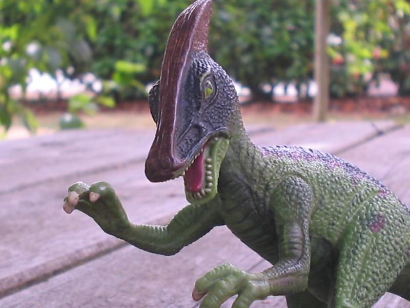 voxosaure et tour de guet HL Img_4226