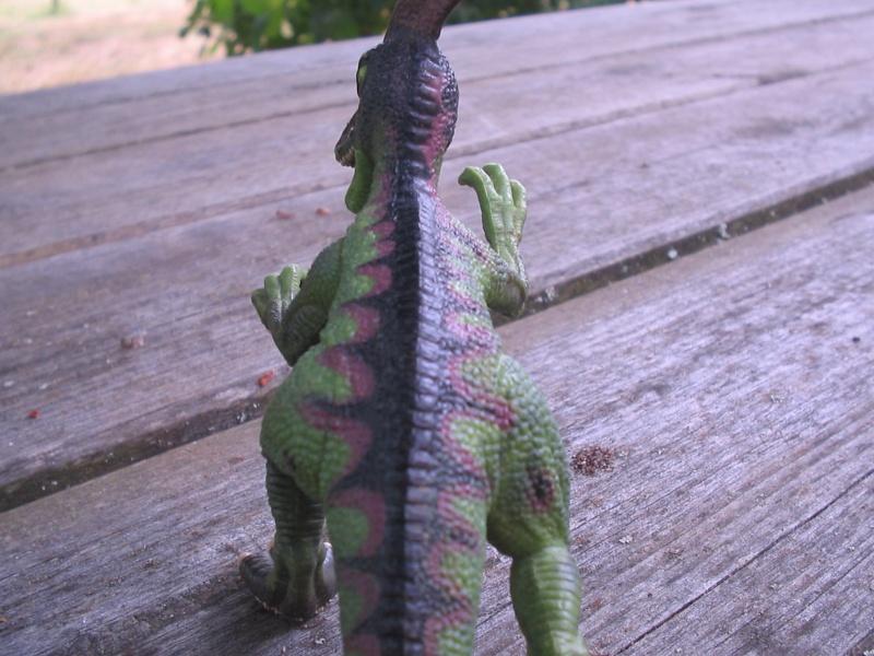 voxosaure et tour de guet HL Img_4227