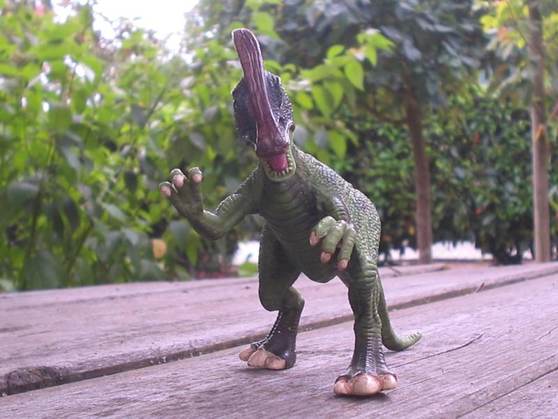 voxosaure et tour de guet HL Img_4229